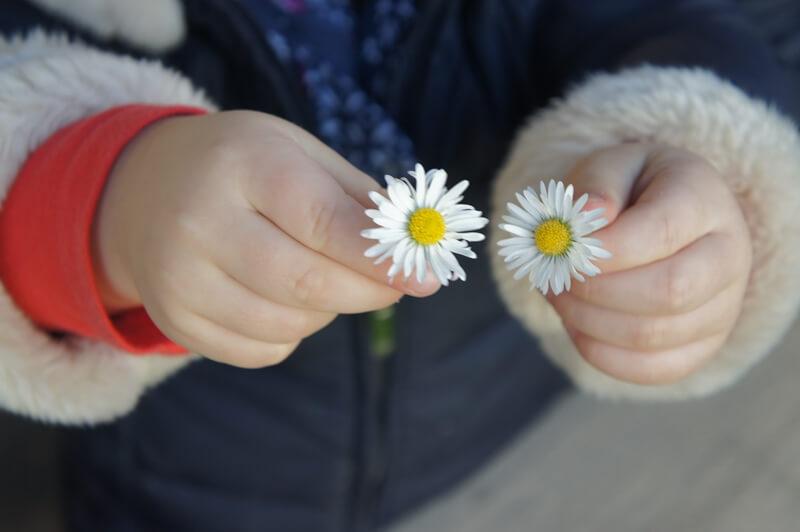asilo nido viale sarca – amore staff per bambini